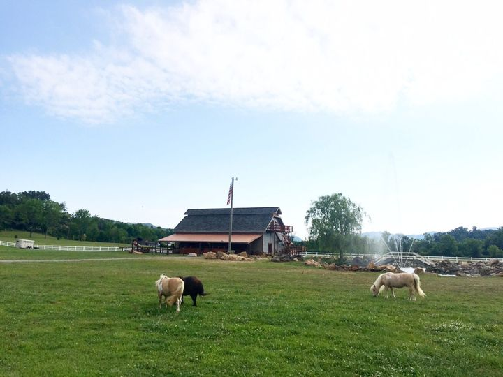 cove mountain ranch - venue - sevierville, tn - weddingwire