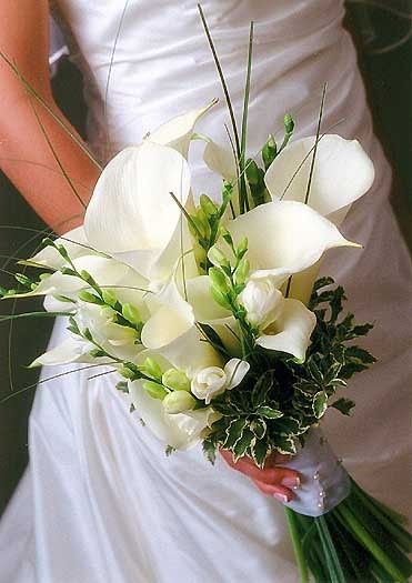 brides bouquet white calla lily
