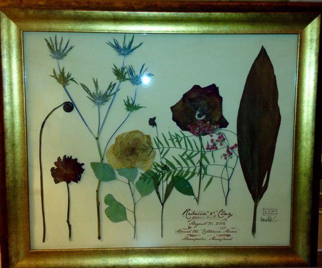 carolyn baucom personal botanical