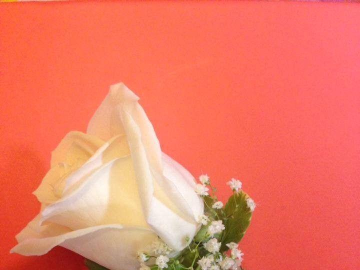 Tmx 1414255589529 102521066325752867969514668137155547267963n Altamonte Springs, FL wedding florist