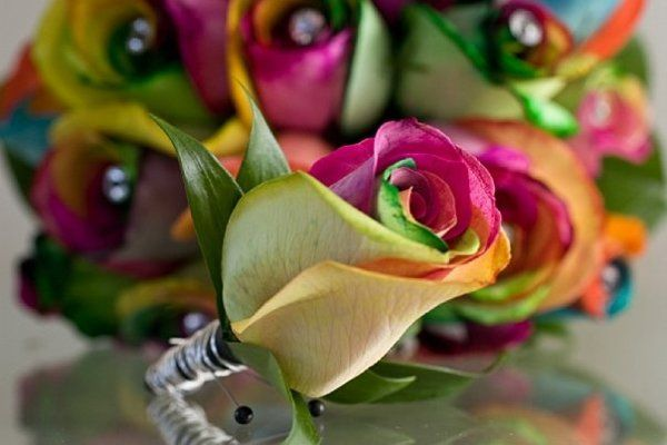 Tmx 1285459309891 Rainbowroses9 West Des Moines, Iowa wedding florist