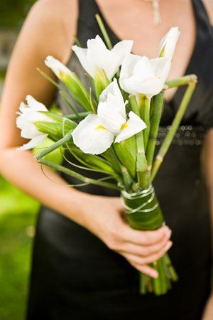 Tmx 1285459539297 0907070464 West Des Moines, Iowa wedding florist