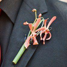 Tmx 1285459622047 0907070267 West Des Moines, Iowa wedding florist