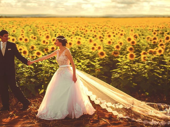 Tmx Bride Groom In Sunflower Field Edited 51 17448 San Francisco, California wedding band