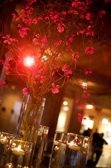 Beautiful Modern Orchid Centerpieces by Botanicals, Inc.  http://www.botanicalschicago.com/ Photo by...