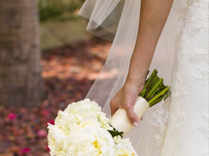 Tmx 1386101913230 Qsdp835346377 Tampa wedding florist