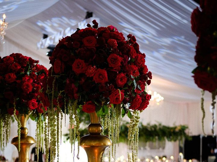 Tmx 1510250213226 752 Tampa wedding florist
