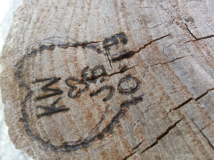 Clients initials are wood burned into a tree stump at Cedar Tree Barn.