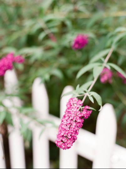 Wedding flower at Castle Hill Farm