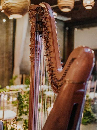 Pretty harp