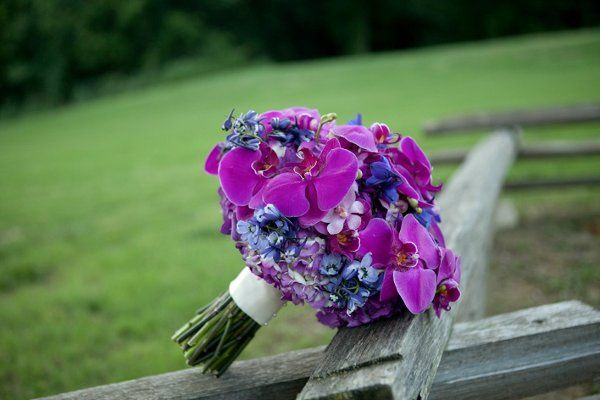 Tmx 1318423182537 TheFrenchBouquetArtworksTulsaPhotography4 Tulsa, OK wedding florist
