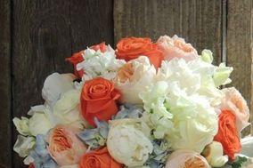 Carter's Florist, Nursery & Landscaping