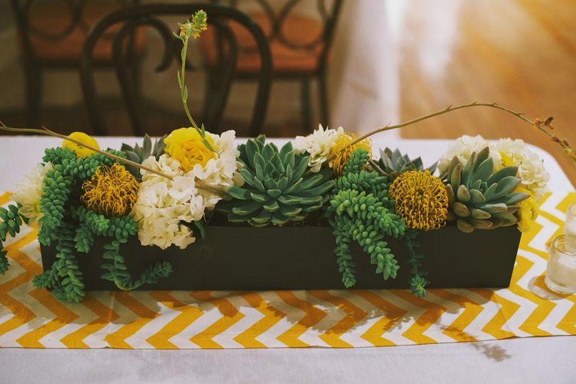 Succulent table runner.  Photo by Nathan Russell Photo.