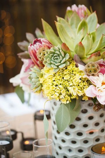 Succulent centerpiece at outdoor wedding in Austin, Texas. Photo by Jake Holt Photography.