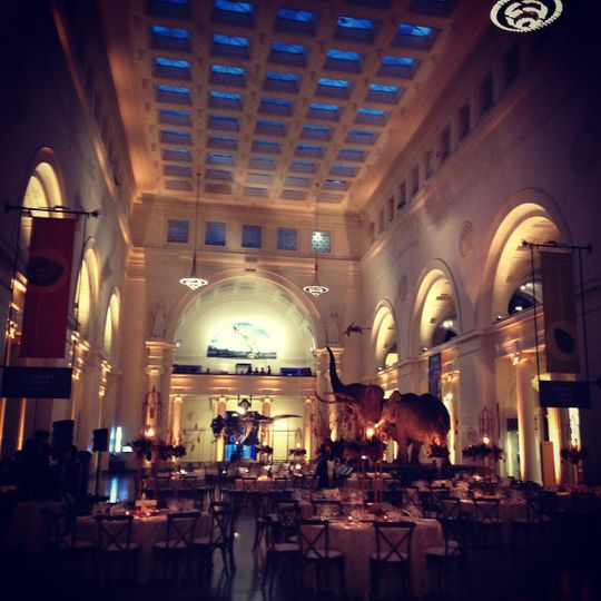 Wedding at the field museum