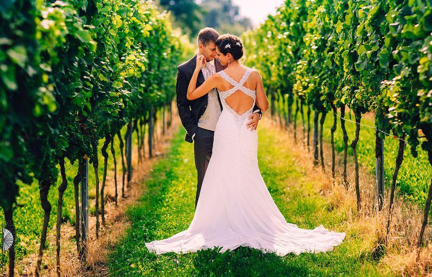Newlyweds in a vineyard