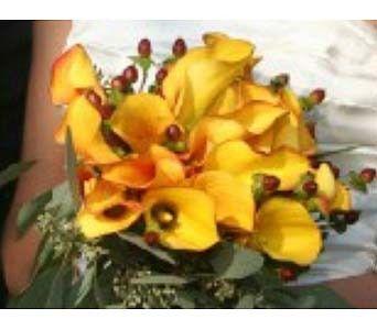 Tmx 1370196512806 Hw0142600 Lyons, WI wedding florist