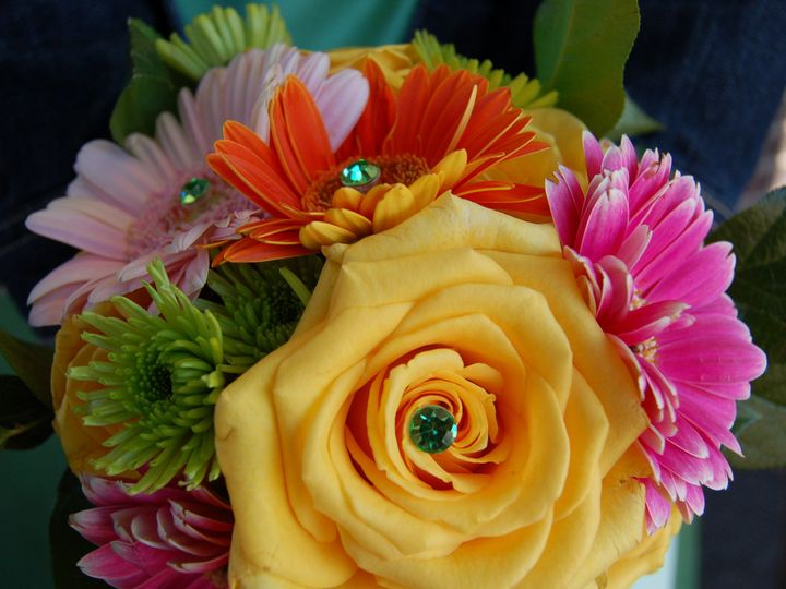 Tmx 1370196859415 Dsc0410 Lyons, WI wedding florist