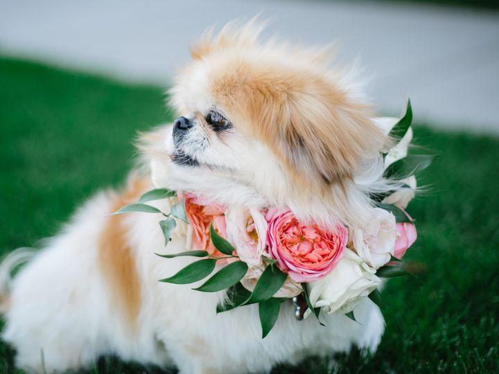Tmx 1479692727529 Img5492 Fort Collins, CO wedding florist