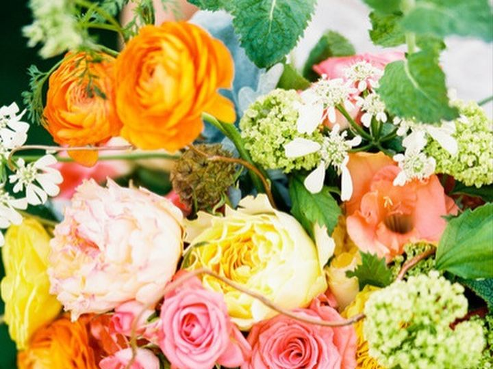Tmx 1479693194335 Img2508 Fort Collins, CO wedding florist