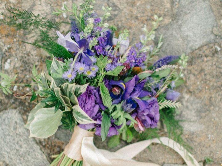 Tmx 1479693231976 Img3624 Fort Collins, CO wedding florist