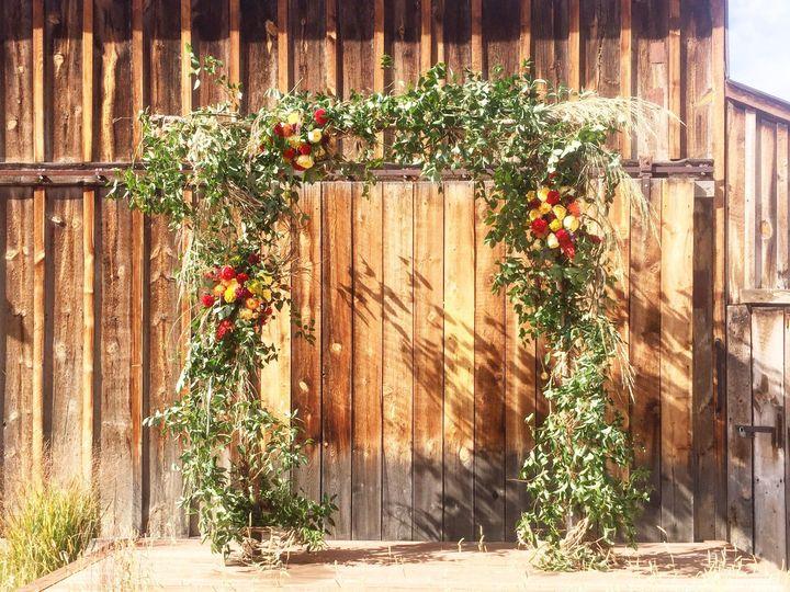 Tmx 1479693262263 Img5845 Fort Collins, CO wedding florist