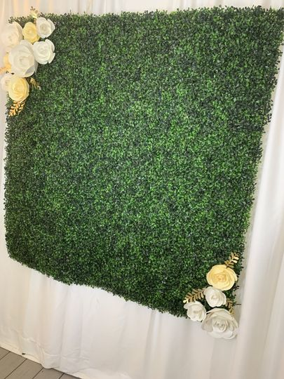 boxwood backdrop 51 475058