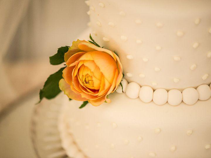 Tmx 1455678013510 Dlp9098 Petaluma, CA wedding photography