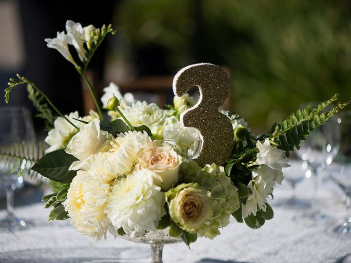 Tmx 1455699135886 Dlp9397 Petaluma, CA wedding photography