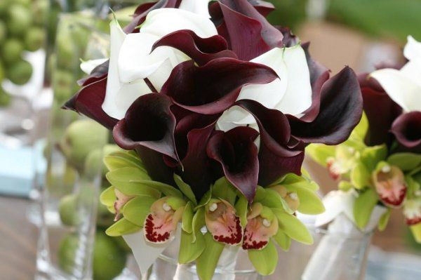 Tmx 1230514384078 Flowers343 Monroe wedding florist