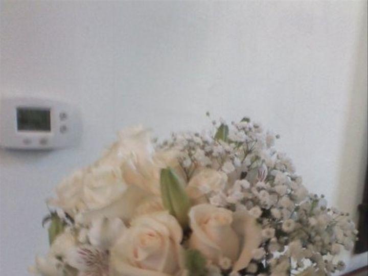 Tmx 1326327942325 0710101515a1 Saint Petersburg wedding florist