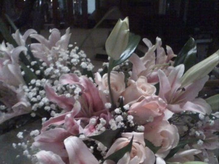 Tmx 1326328150232 1227101753b1 Saint Petersburg wedding florist