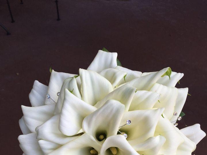 Tmx Img 1516 51 65258 Katy, TX wedding florist