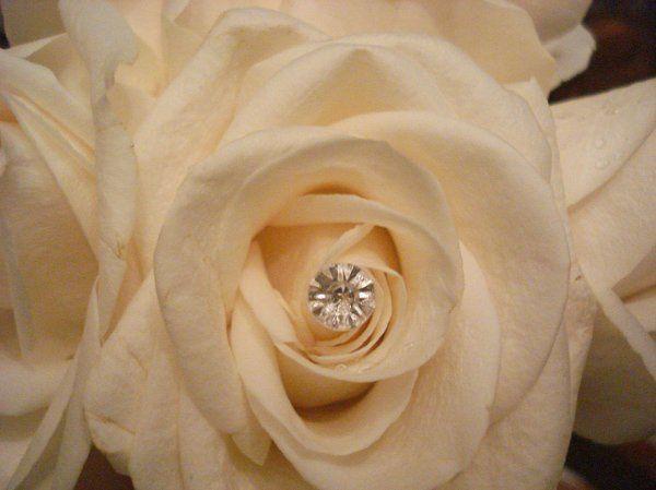 Tmx 1332263801302 DSC06921 Marlborough wedding florist