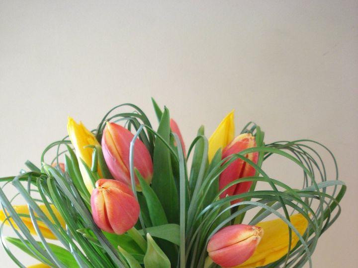 Tmx 1360338462722 DSC06937 Marlborough wedding florist