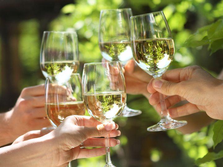 Tmx 1468440634472 Wine Glasses Hermitage, TN wedding planner
