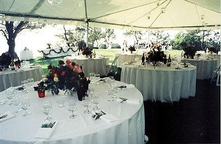 Tmx 1237555550702 Tentevent3 Wood Ridge wedding rental