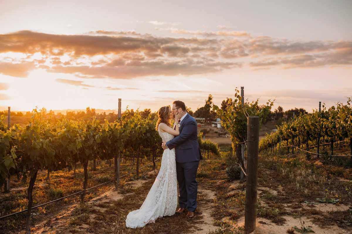 Monte De Oro Winery and Vineyards