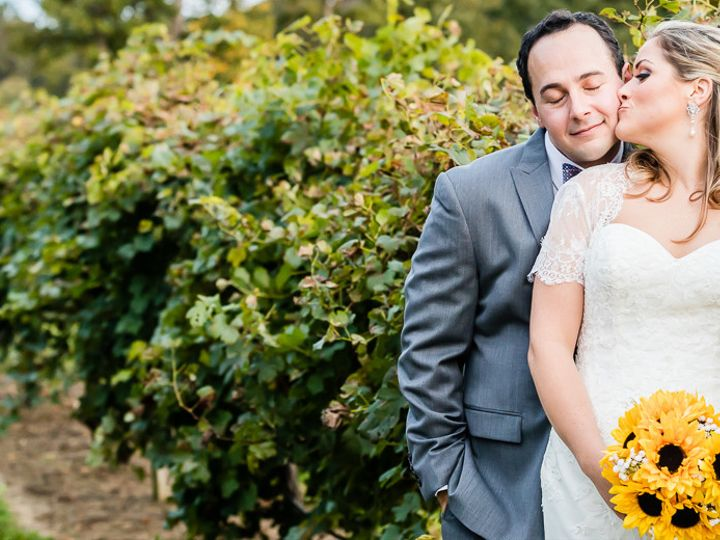 Tmx 1497750203800 Lisagreggallery002 Alexandria, VA wedding photography