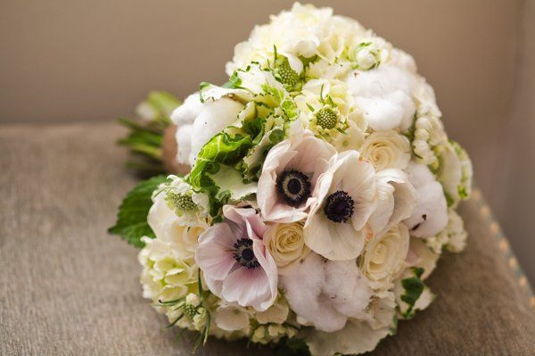 White anemone, white scabiosa, ivory Hydrangea, kale, Cotton bolls, Snowy Jewel roses