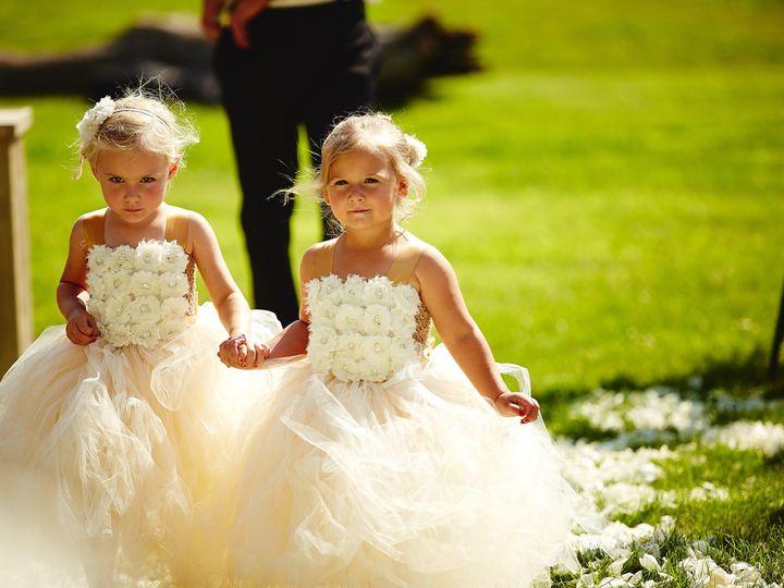 Tmx 1415459738523 0x8a5416 Minneapolis wedding planner