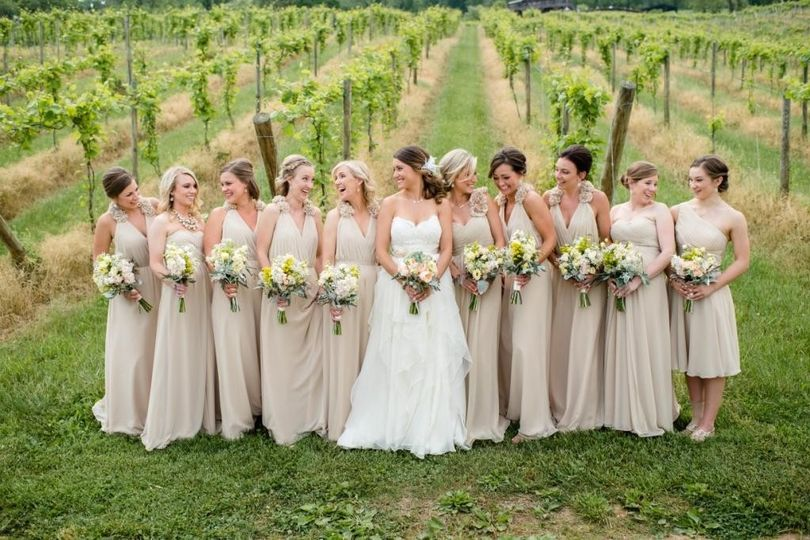 Bride and bridesmaids in the vineyard