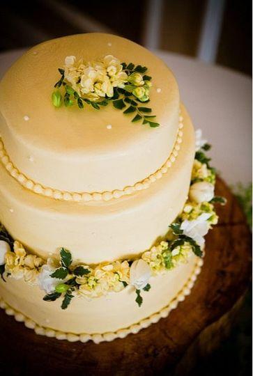 michelle cake