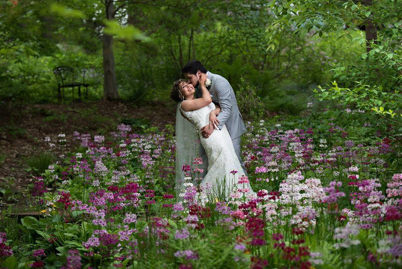 the primrose garden 51 66658 v2
