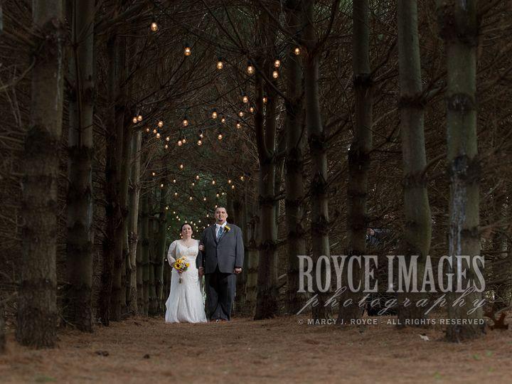 Tmx Lizeric Gerberwedding 4 29 18 636 51 707658 York, PA wedding photography