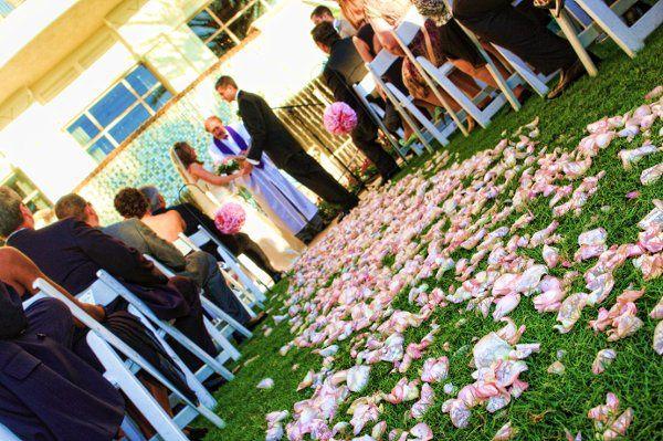 Tmx 1285766553654 0129 Clearwater, FL wedding photography