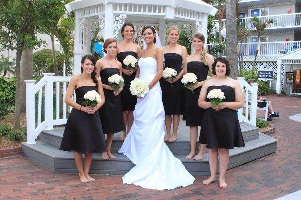 Tmx 1285766751904 0208 Clearwater, FL wedding photography