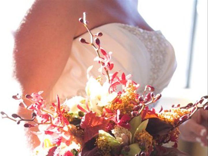 Tmx 1319042630640 IMG4646 Clearwater, FL wedding photography