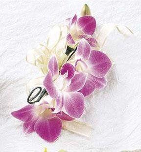Tmx 1298486689878 5thave Columbus, Ohio wedding florist
