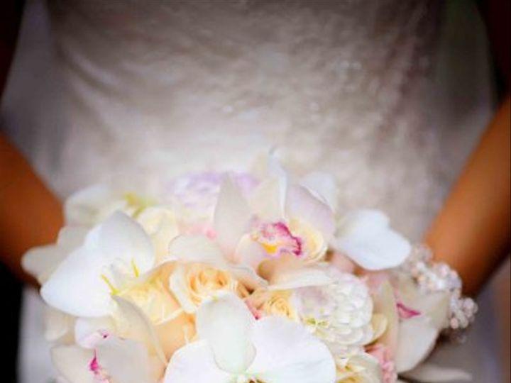Tmx 1334866455538 Hydrangeain3x3cubebutwrongcolor2 Gloucester, Massachusetts wedding florist